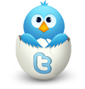 twitter egg Daily Social Media + Website Design