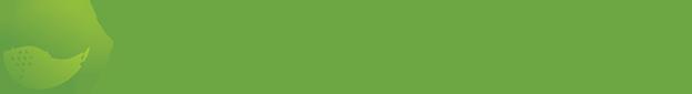 720media Retina Logo